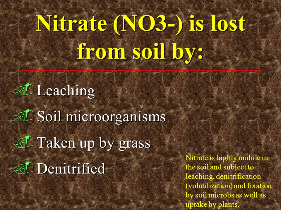 Nitrate (NO3-) is lost from soil by: