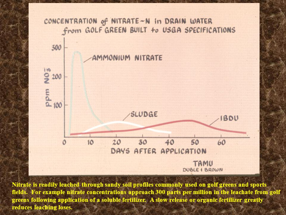 Nitrate is readily leached through sandy soil profiles commonly used on golf greens and sports fields. For example nitrate concentrations approach 300 parts per million in the leachate from golf greens following application of a soluble fertilizer. A slow release or organic fertilizer greatly reduces leaching loses.