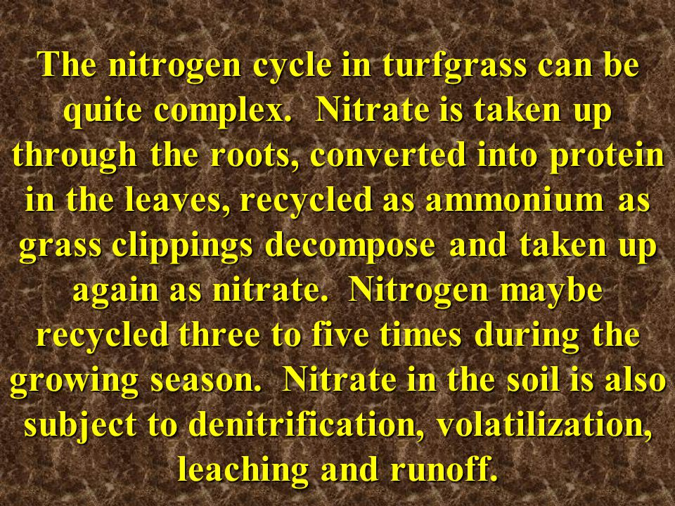 The nitrogen cycle in turfgrass can be quite complex