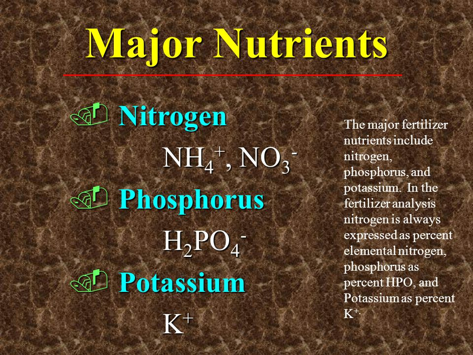 Major Nutrients Nitrogen NH4+, NO3- Phosphorus H2PO4- Potassium K+