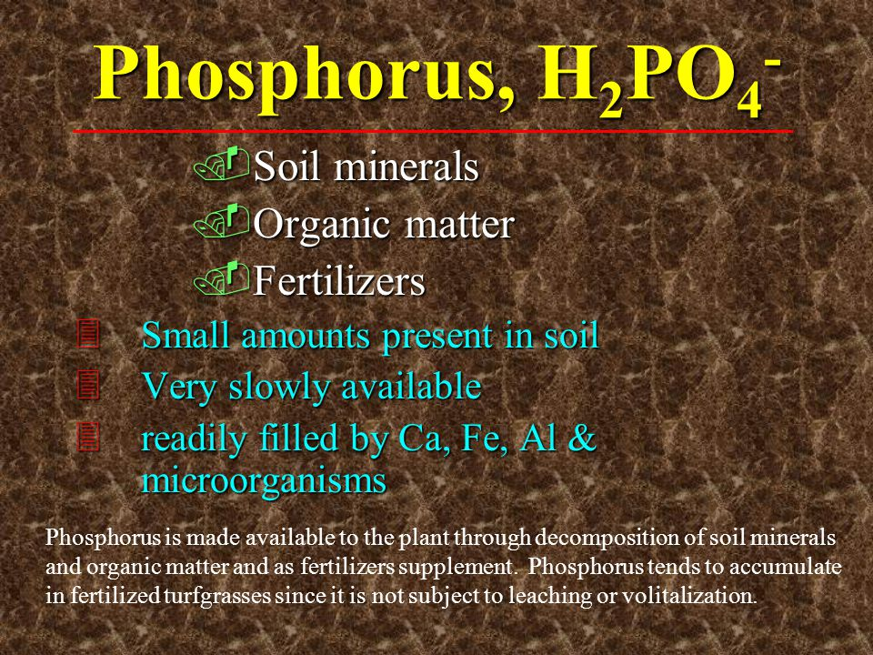 Phosphorus, H2PO4- Soil minerals Organic matter Fertilizers