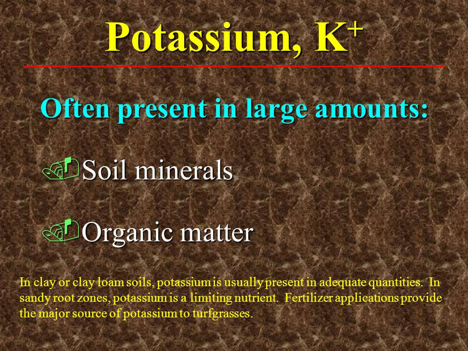 Potassium, K+ Often present in large amounts: Soil minerals