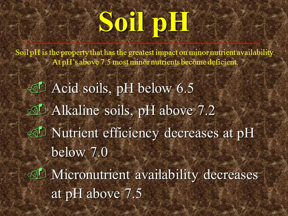 Soil pH Acid soils, pH below 6.5 Alkaline soils, pH above 7.2