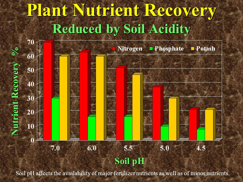 Plant Nutrient Recovery Reduced by Soil Acidity