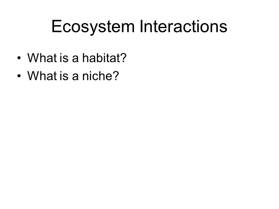 Ecosystem Interactions