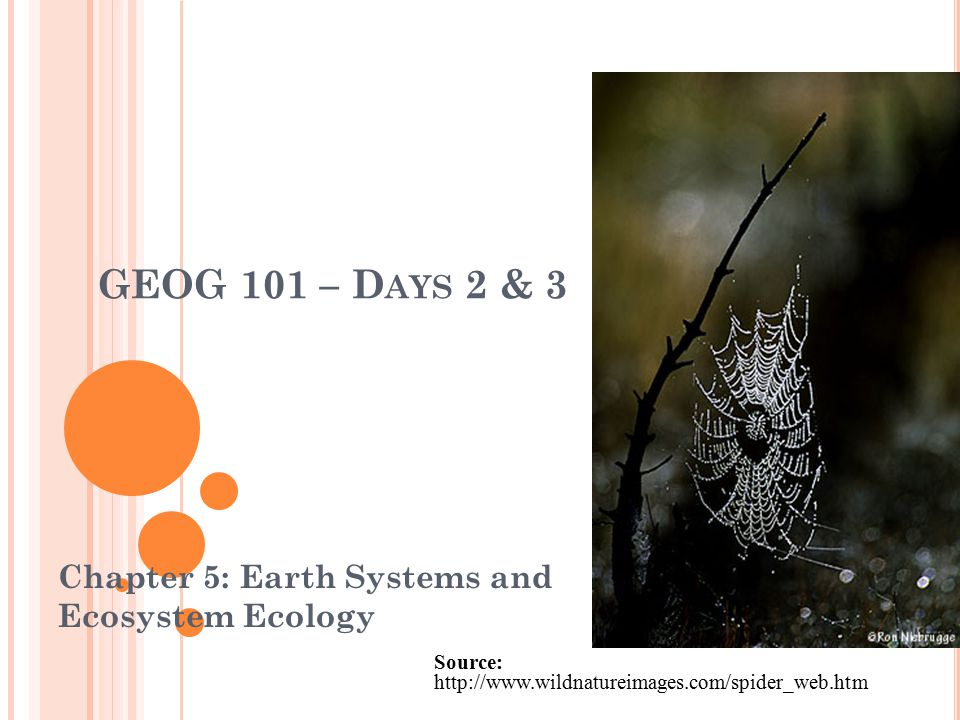 Chapter 5: Earth Systems and Ecosystem Ecology