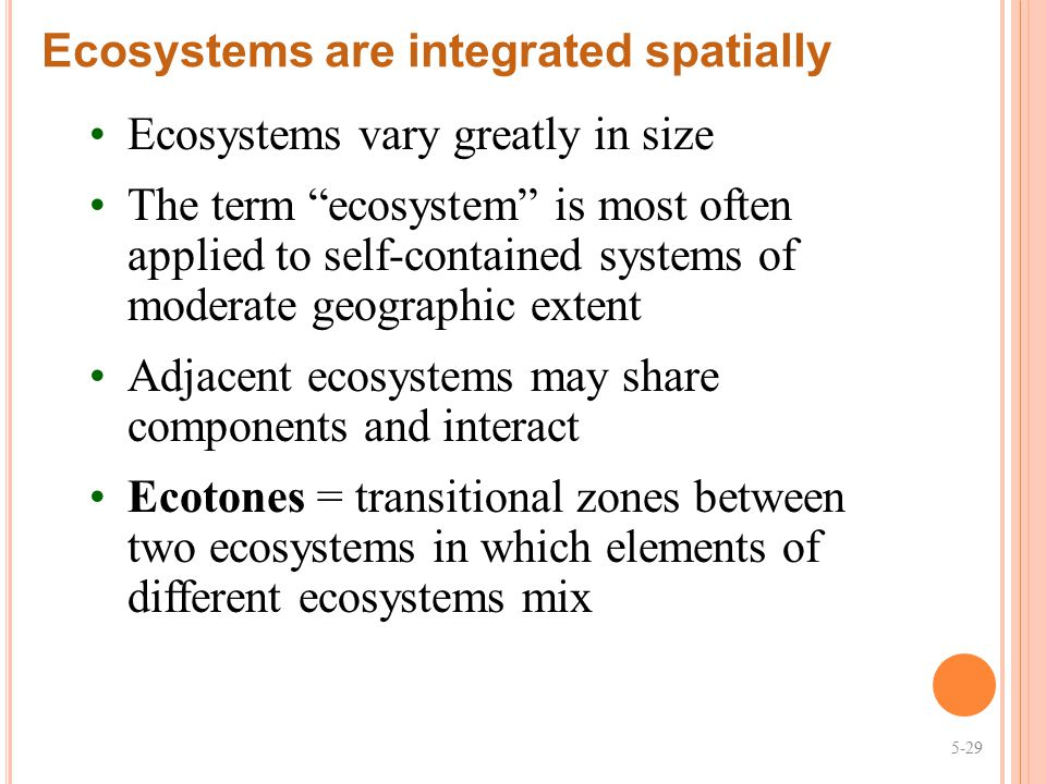 Ecosystems are integrated spatially