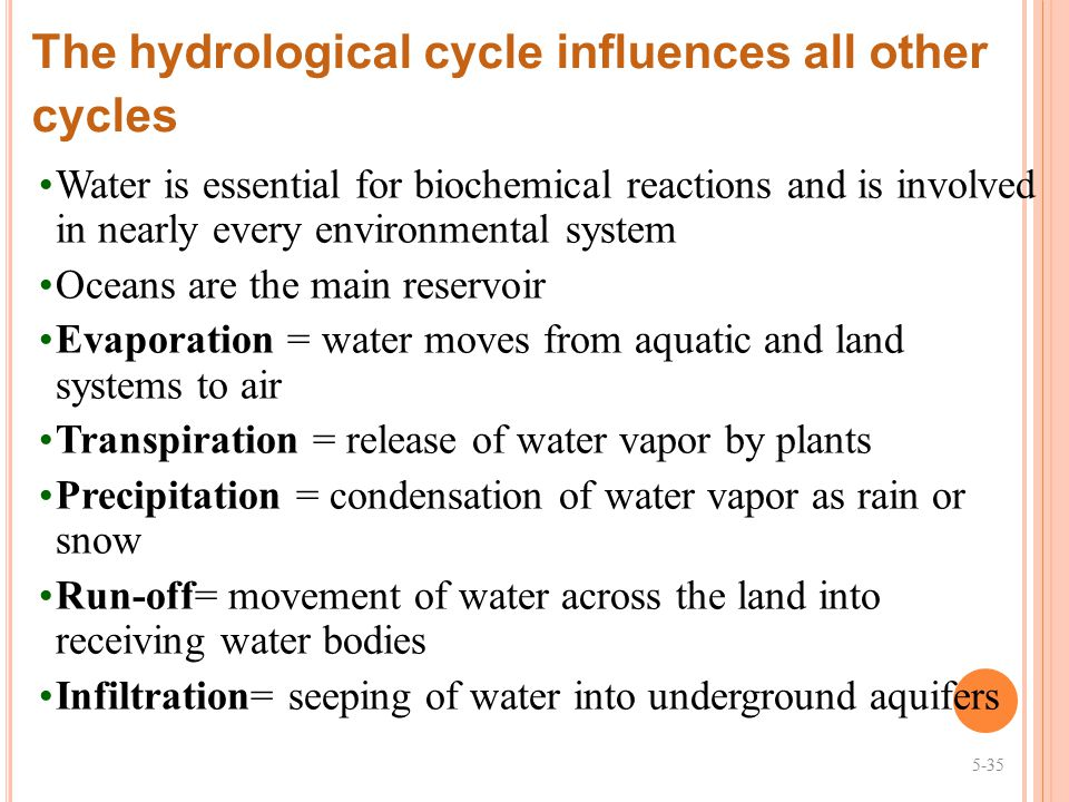 The hydrological cycle influences all other cycles