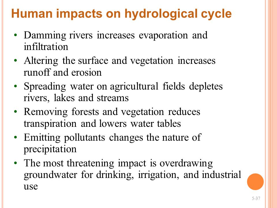 Human impacts on hydrological cycle
