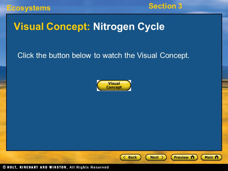 Visual Concept: Nitrogen Cycle