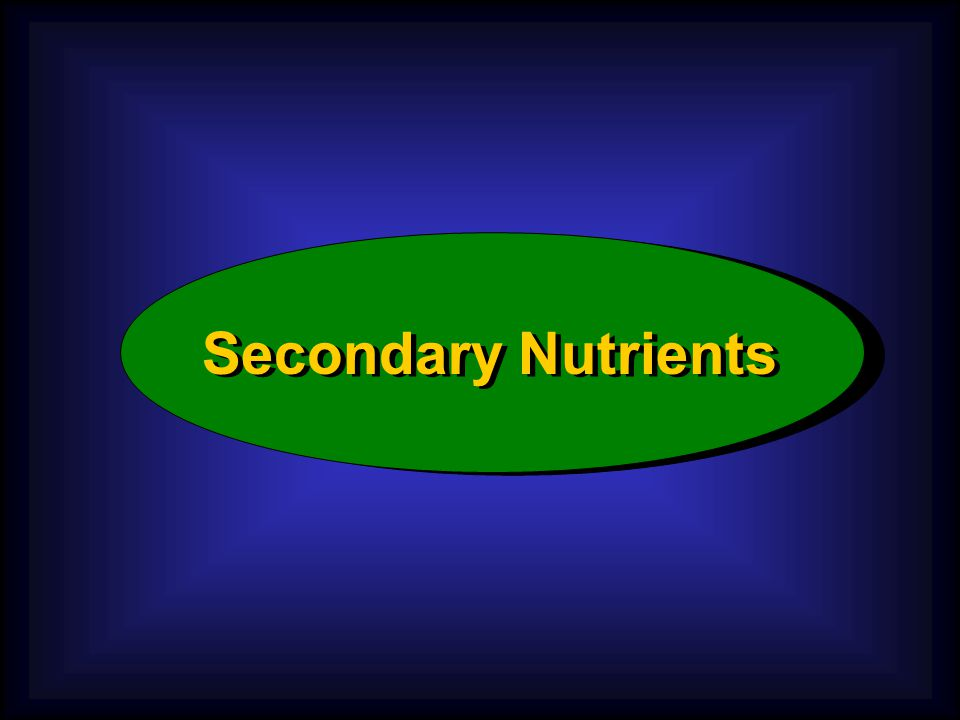 Secondary Nutrients