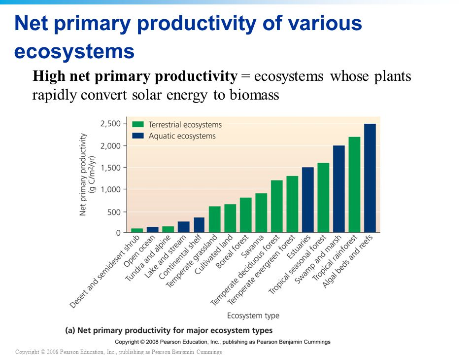 Net primary productivity of various ecosystems