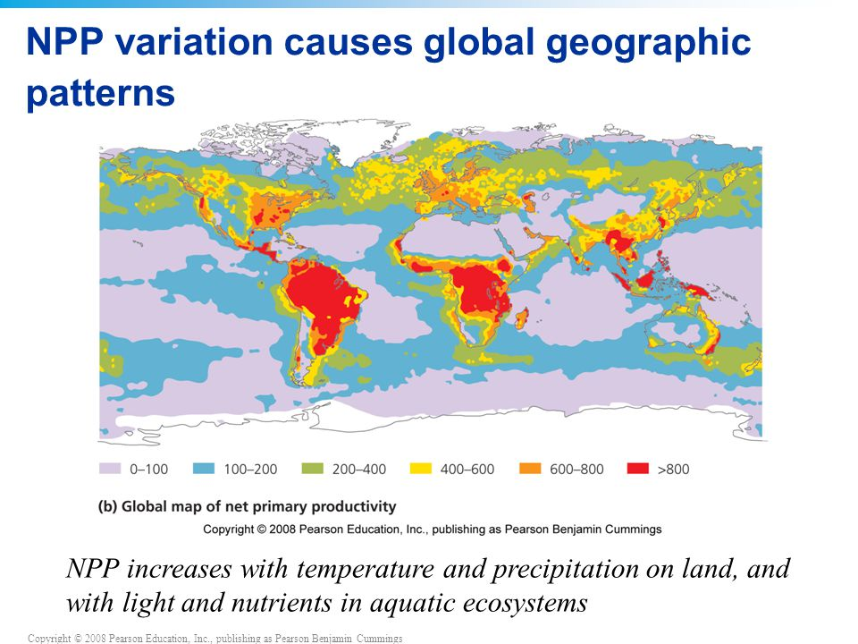 NPP variation causes global geographic patterns