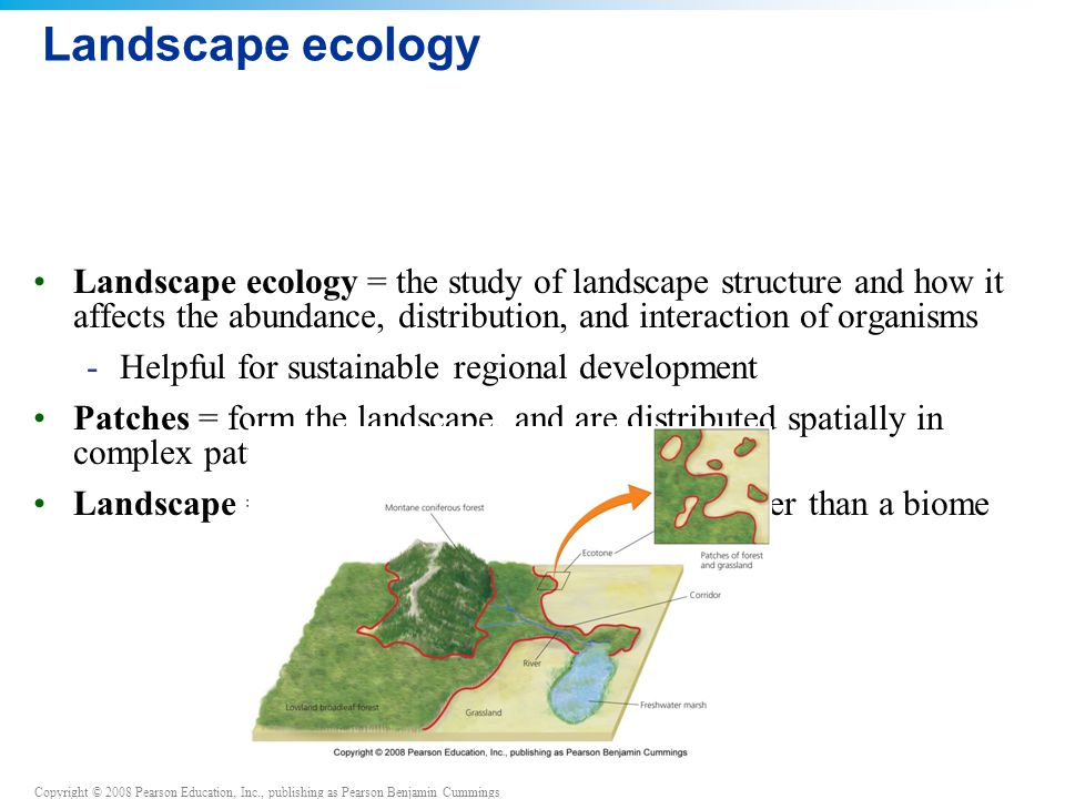 Landscape ecology Landscape ecology = the study of landscape structure and how it affects the abundance, distribution, and interaction of organisms.