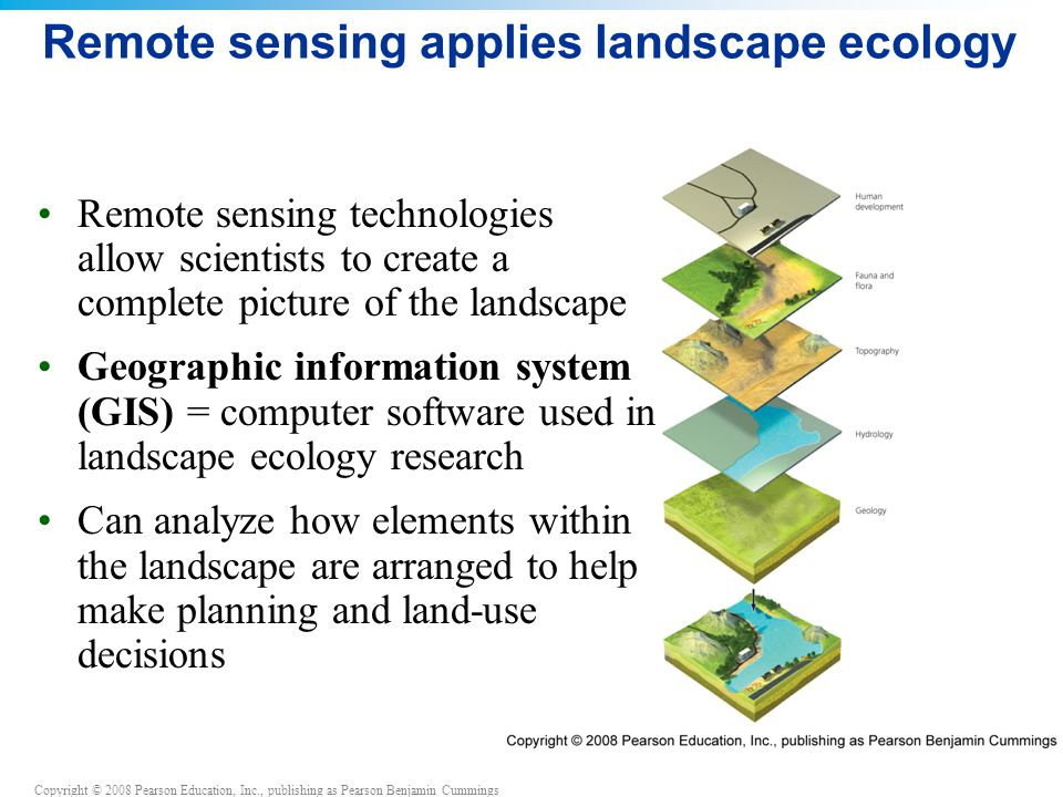 Remote sensing applies landscape ecology