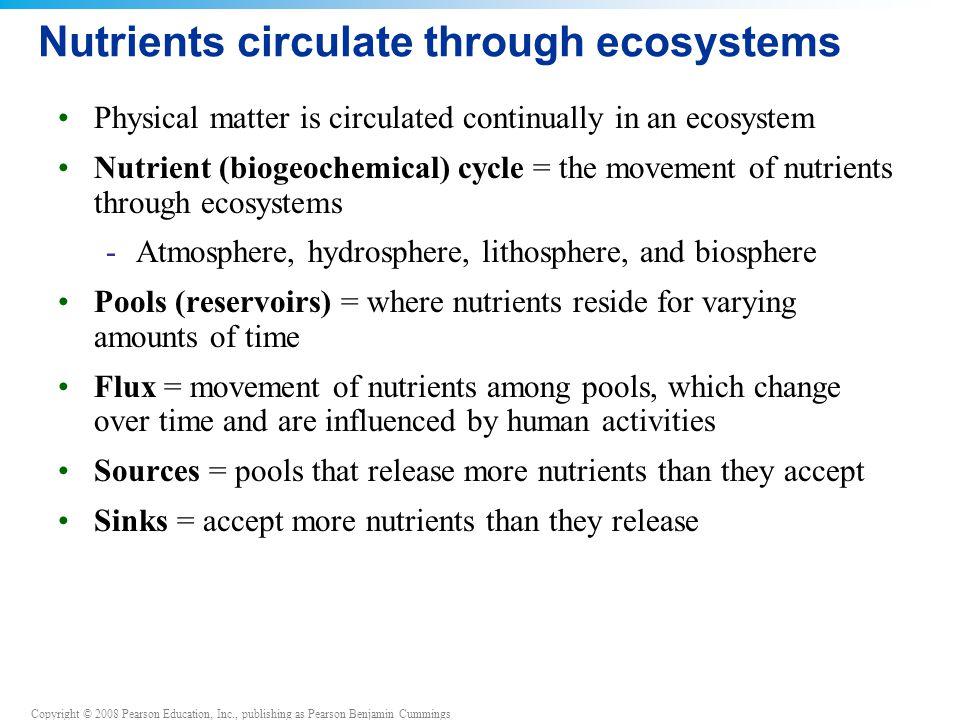 Nutrients circulate through ecosystems