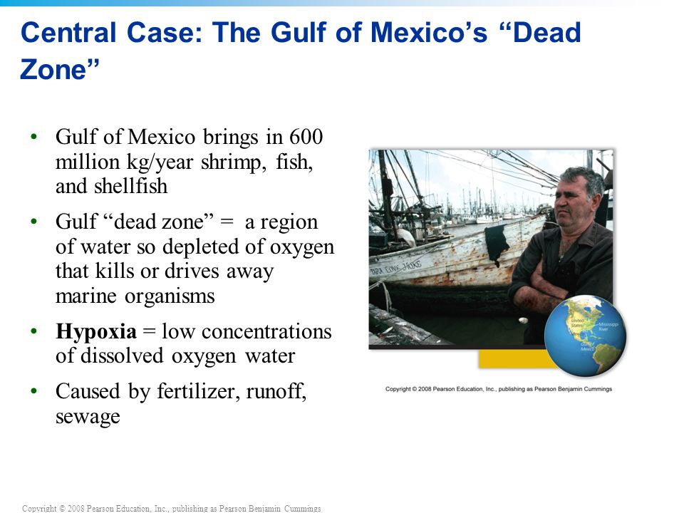 Central Case: The Gulf of Mexico's Dead Zone