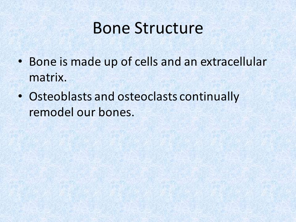 Bone Structure Bone is made up of cells and an extracellular matrix.