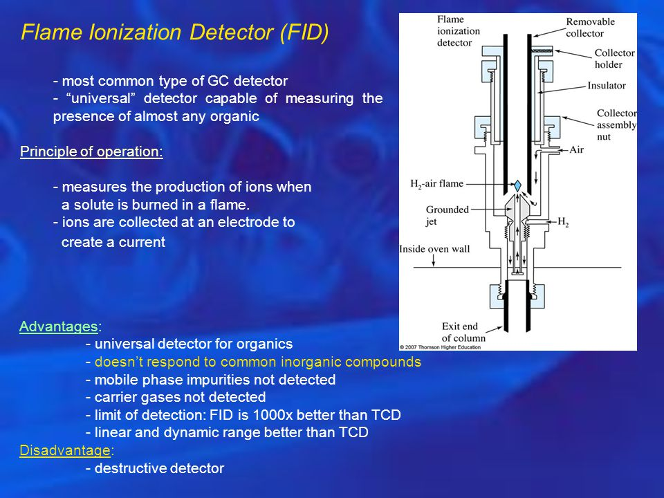 Flame Ionization Detector (FID)