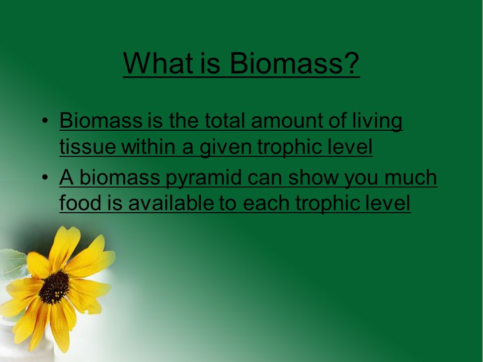 What is Biomass Biomass is the total amount of living tissue within a given trophic level.