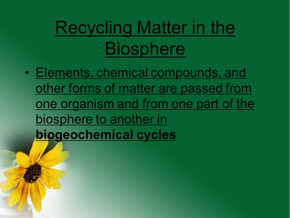 Recycling Matter in the Biosphere
