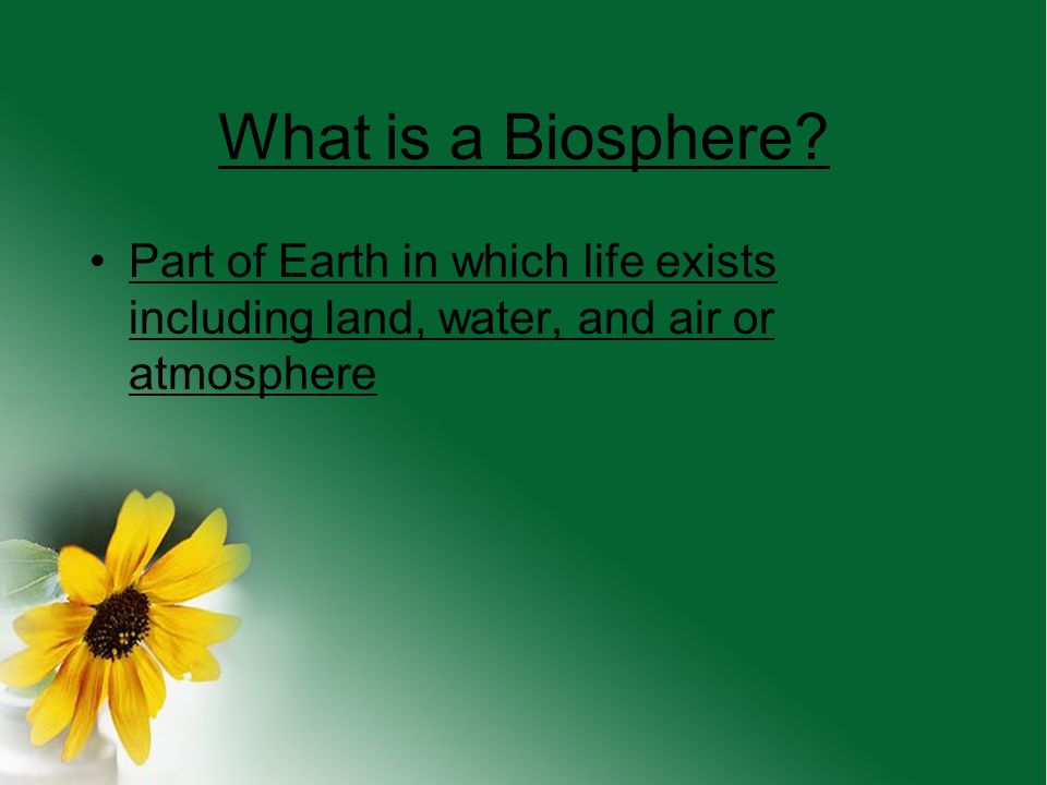 What is a Biosphere.