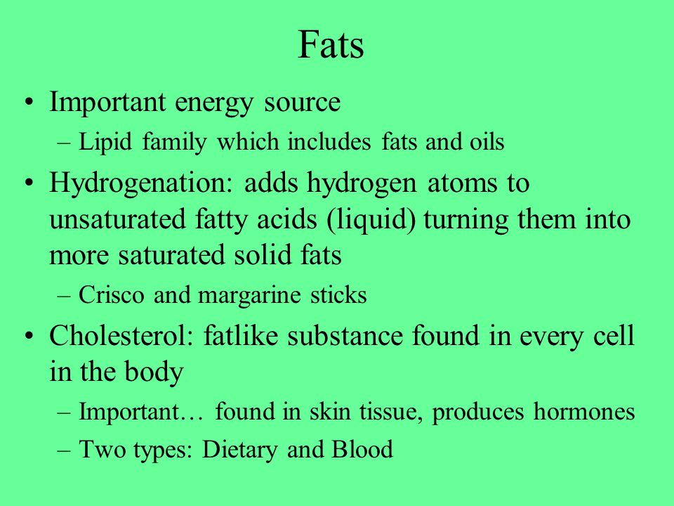 Fats Important energy source