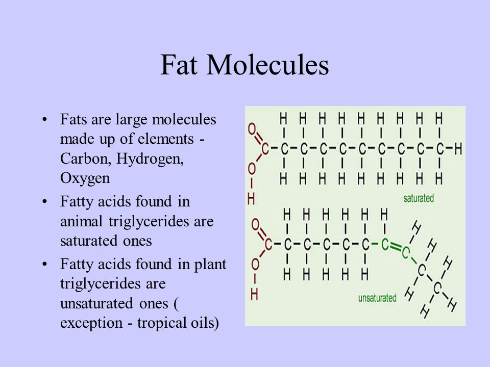 Fat Molecules Fats are large molecules made up of elements - Carbon, Hydrogen, Oxygen. Fatty acids found in animal triglycerides are saturated ones.