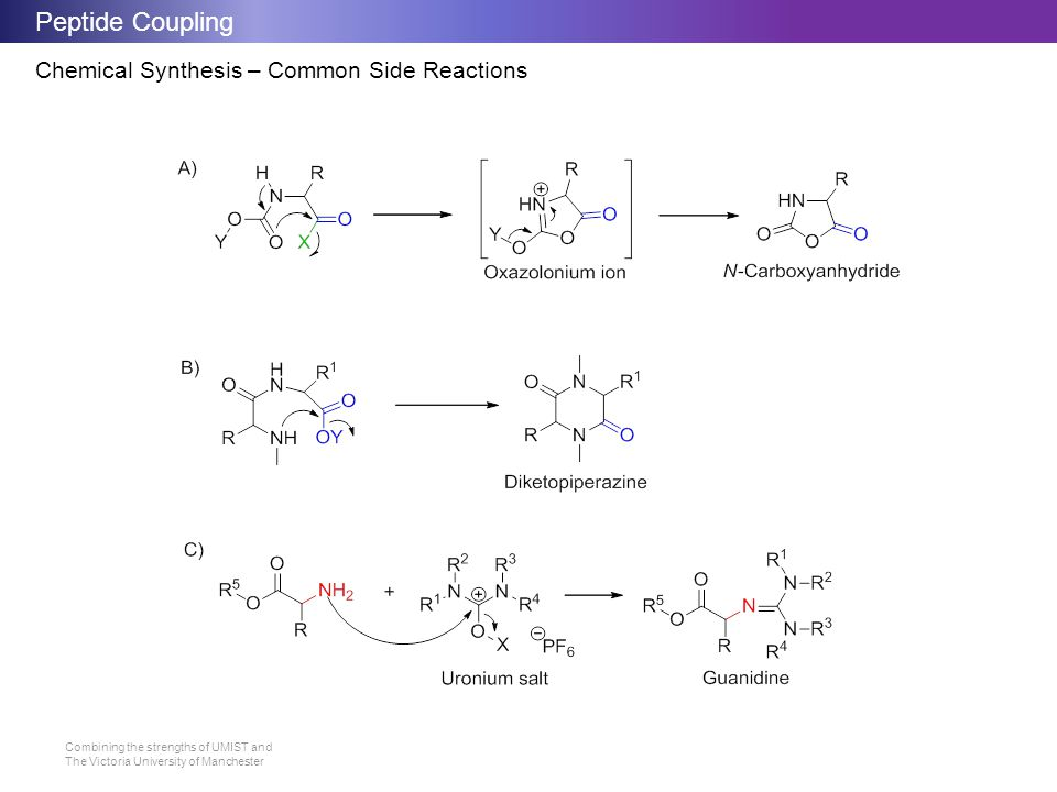 Peptide Coupling Chemical Synthesis – Common Side Reactions