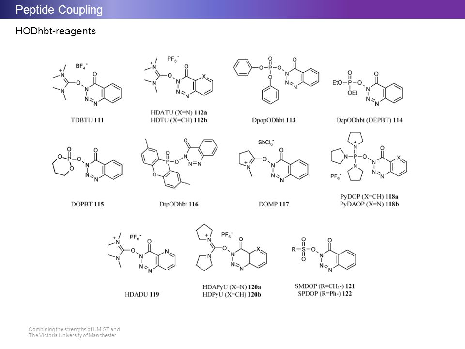 Peptide Coupling HODhbt-reagents