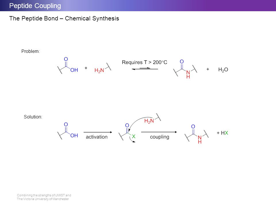 Peptide Coupling The Peptide Bond – Chemical Synthesis Problem: