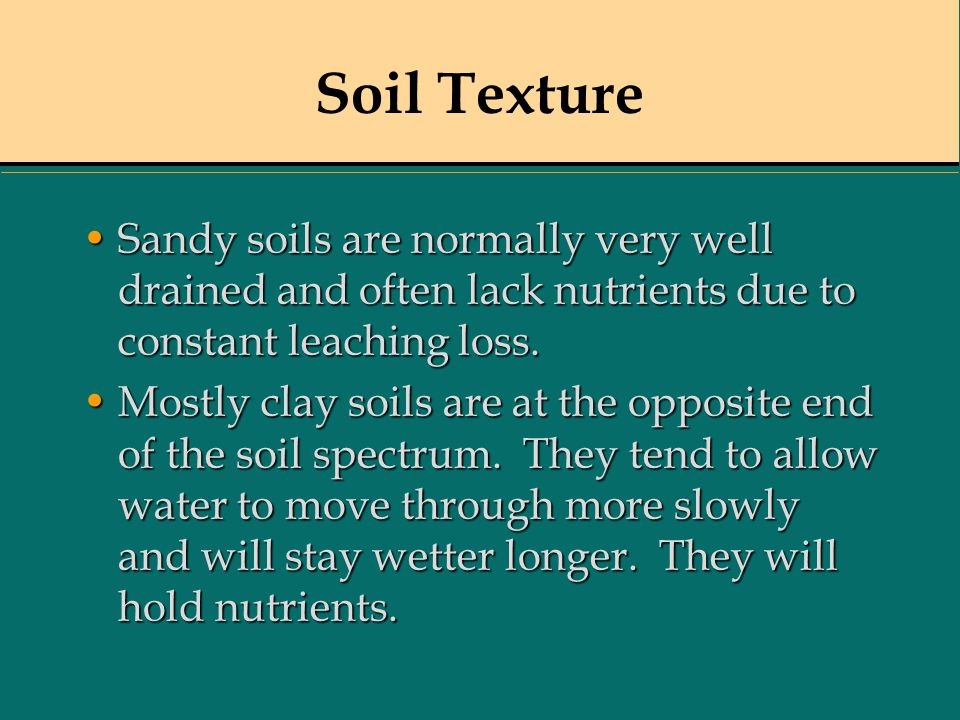 Soil Texture Sandy soils are normally very well drained and often lack nutrients due to constant leaching loss.