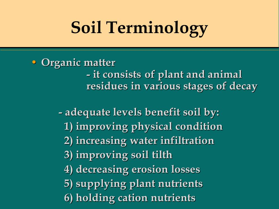 Soil Terminology Organic matter - it consists of plant and animal residues in various stages of decay.