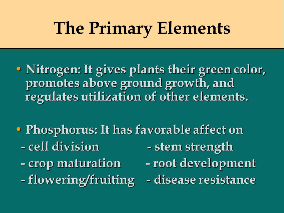 The Primary Elements Nitrogen: It gives plants their green color, promotes above ground growth, and regulates utilization of other elements.