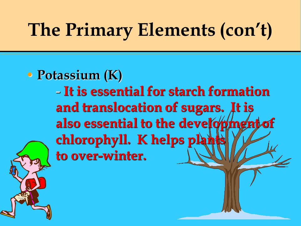The Primary Elements (con't)