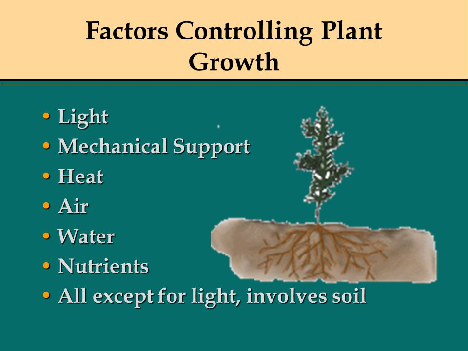 Factors Controlling Plant Growth