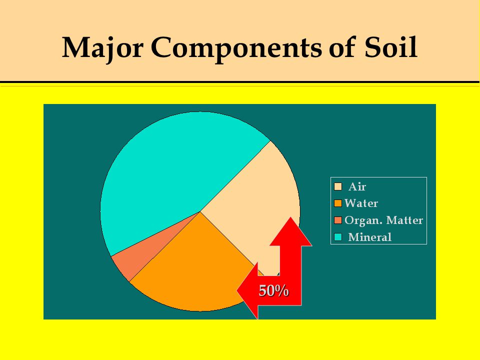 Major Components of Soil