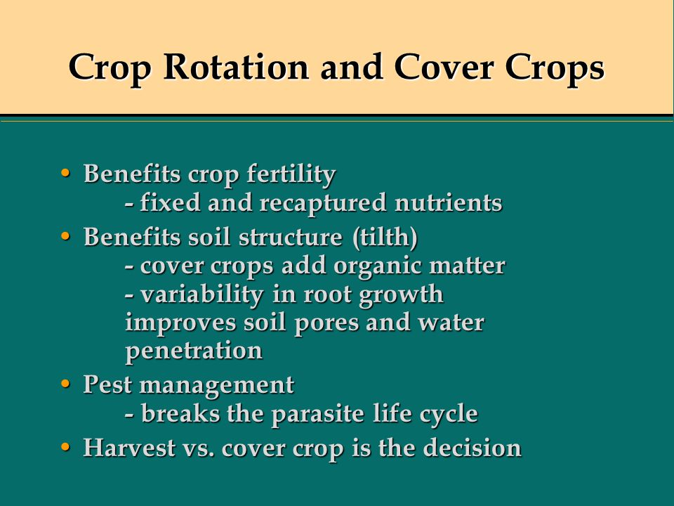 Crop Rotation and Cover Crops