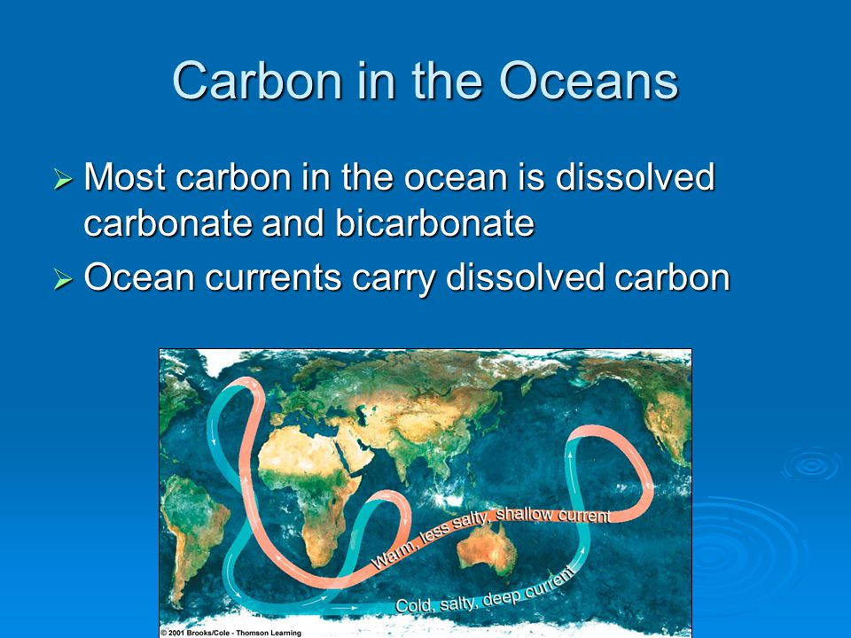 Carbon in the Oceans Most carbon in the ocean is dissolved carbonate and bicarbonate.