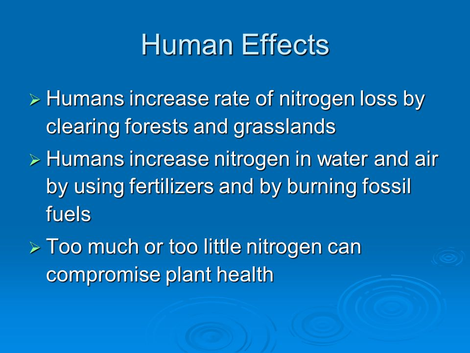 Human Effects Humans increase rate of nitrogen loss by clearing forests and grasslands.