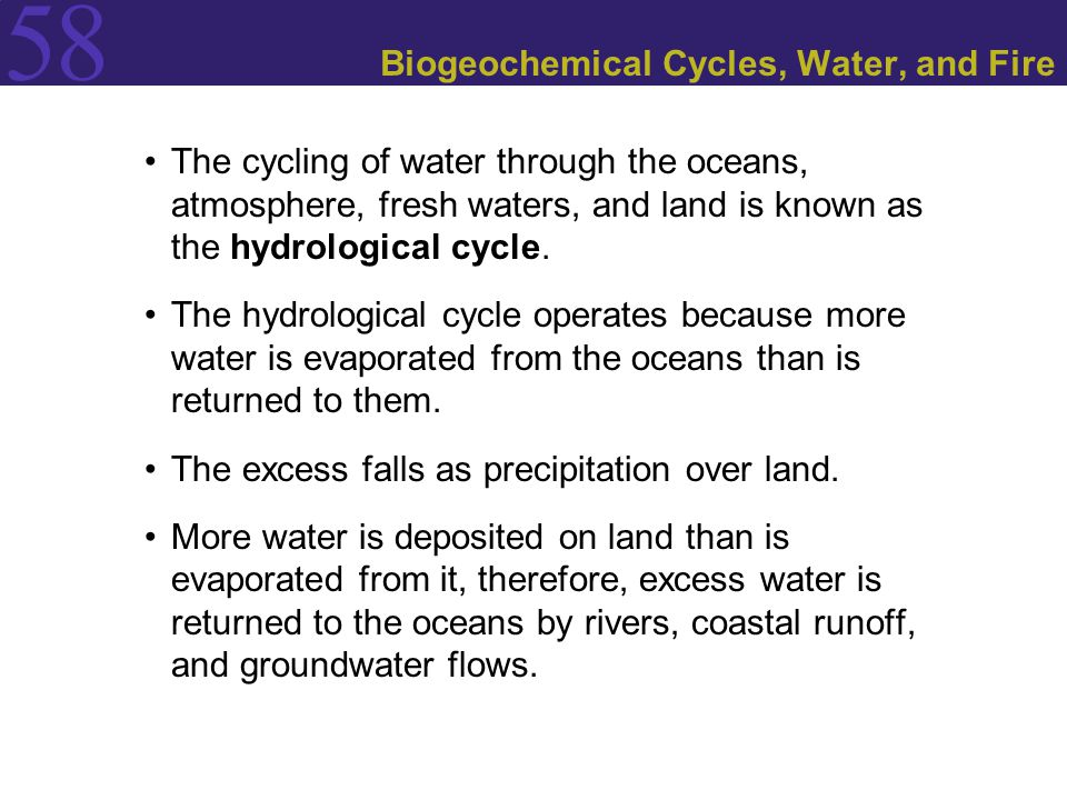 Biogeochemical Cycles, Water, and Fire