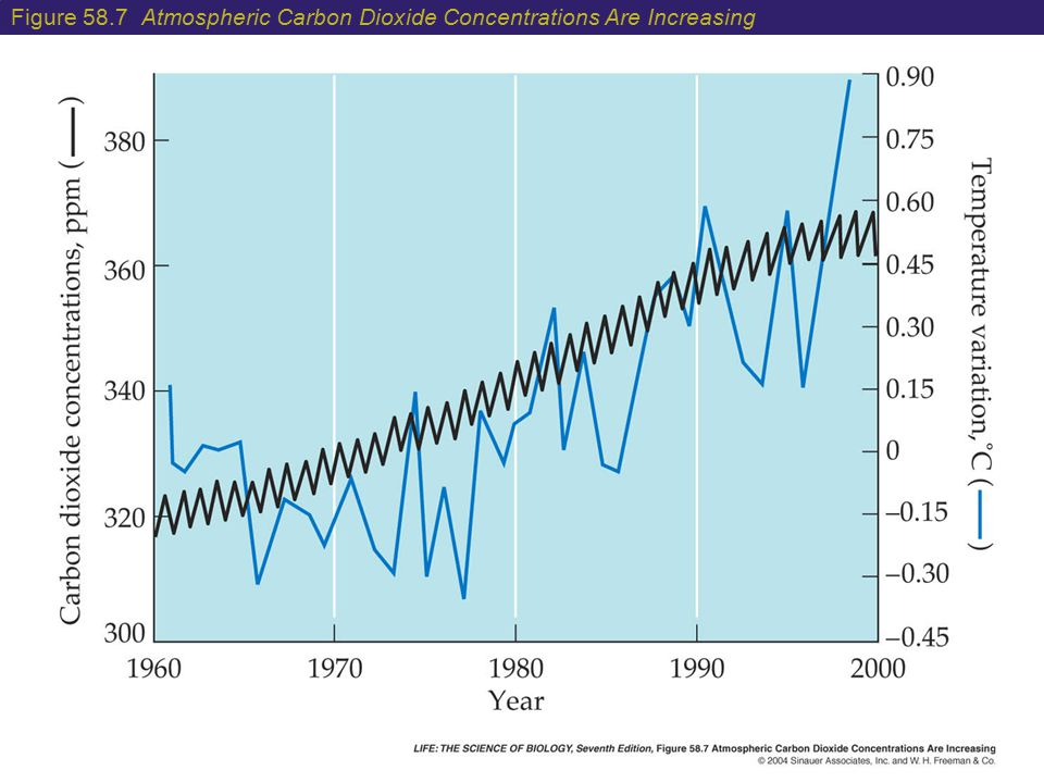 Figure 58.7 Atmospheric Carbon Dioxide Concentrations Are Increasing