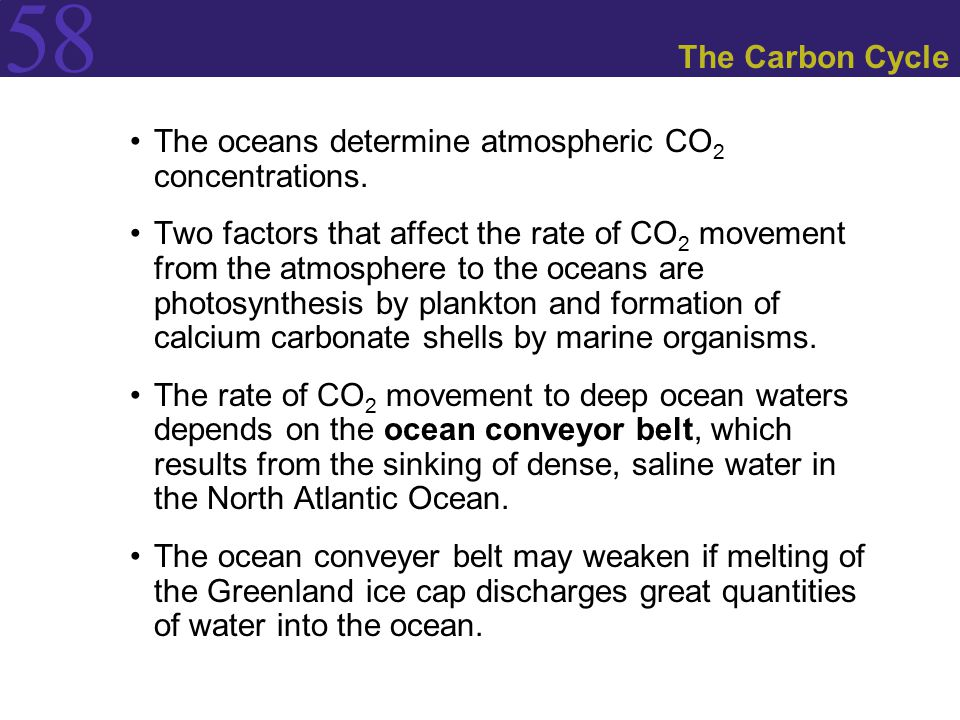 The Carbon Cycle The oceans determine atmospheric CO2 concentrations.