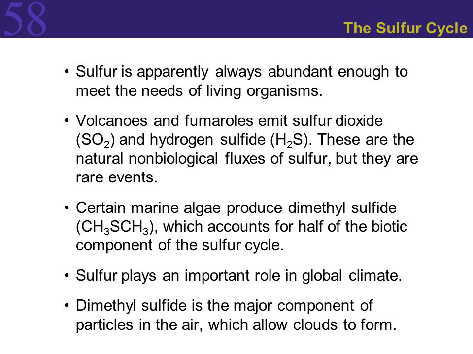 The Sulfur Cycle Sulfur is apparently always abundant enough to meet the needs of living organisms.