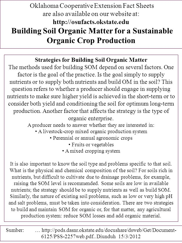 Strategies for Building Soil Organic Matter