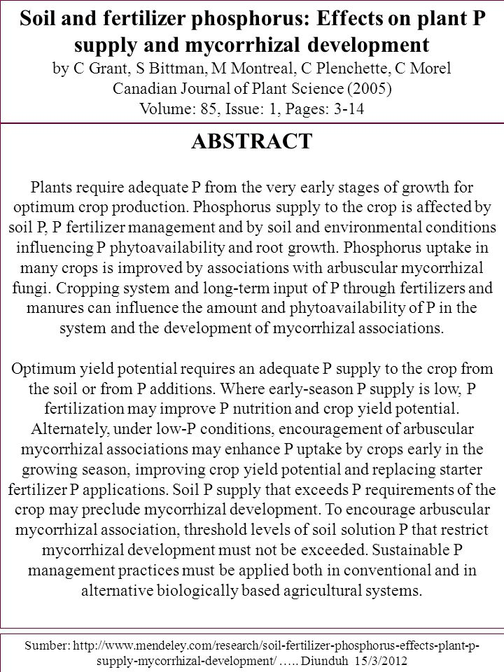 Soil and fertilizer phosphorus: Effects on plant P supply and mycorrhizal development
