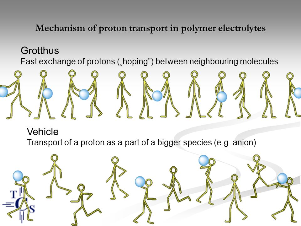 Mechanism of proton transport in polymer electrolytes