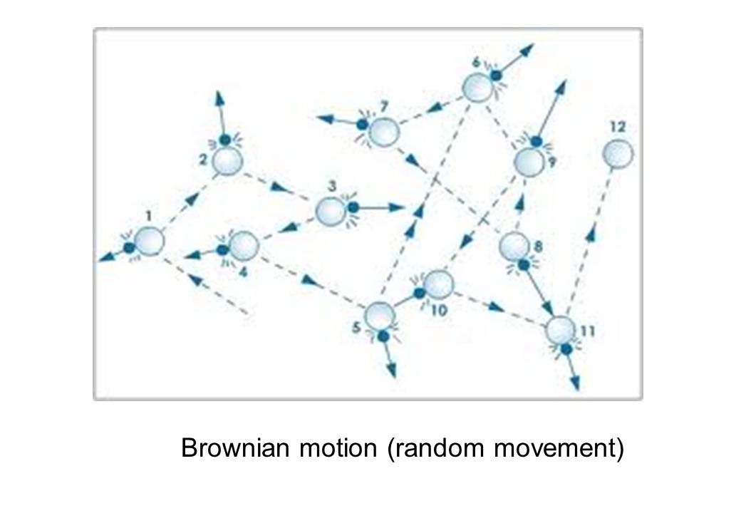 Brownian motion (random movement)