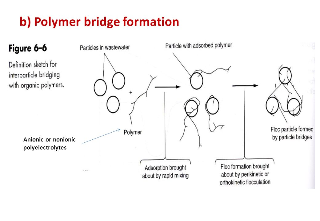 b) Polymer bridge formation