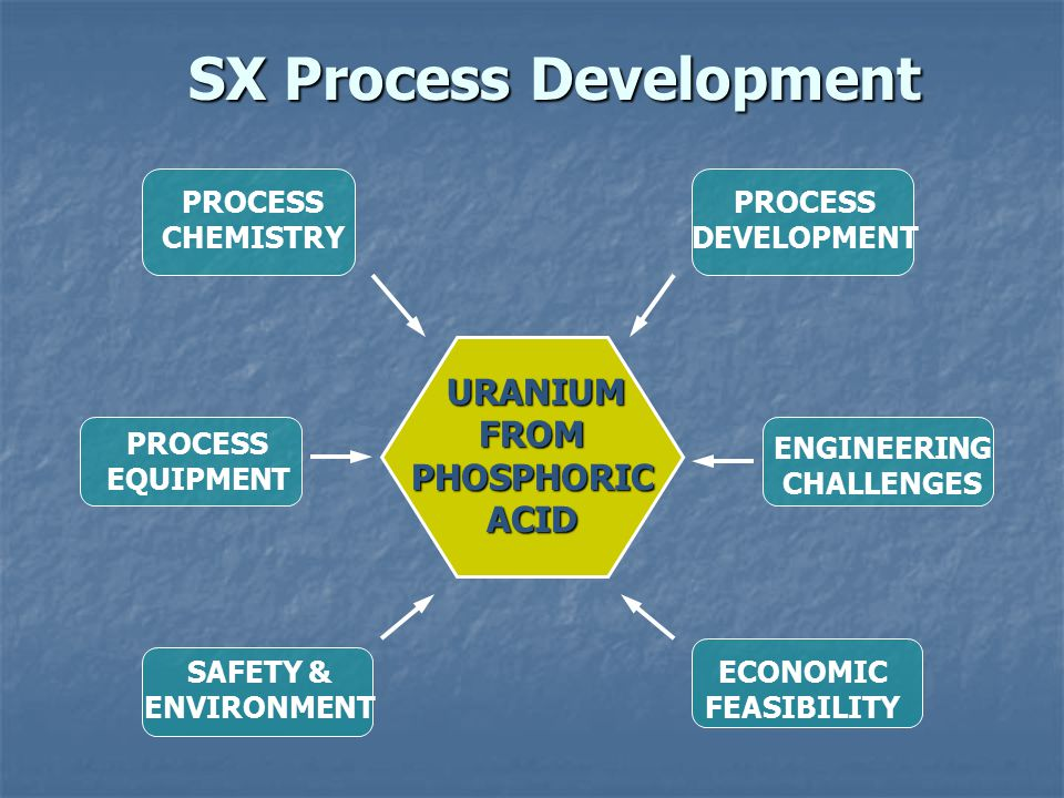 SX Process Development
